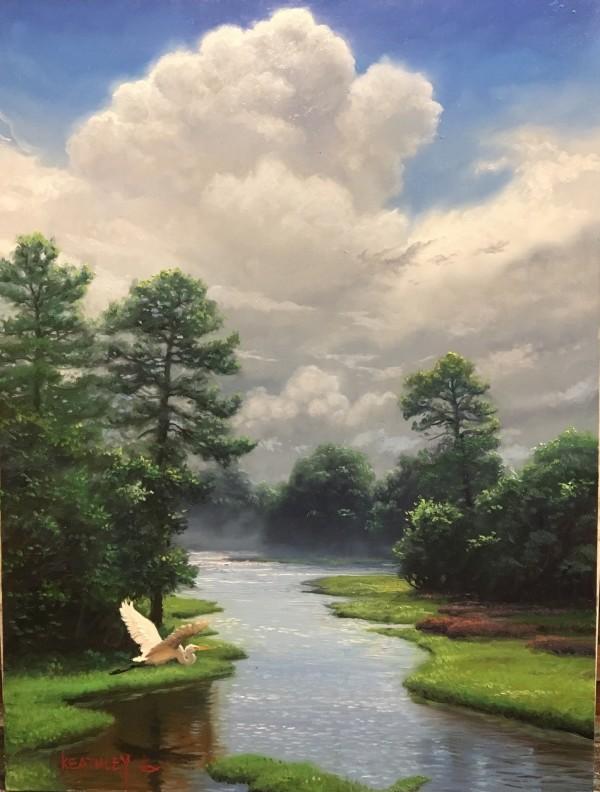 Lowland Marsh by Mark Keathley