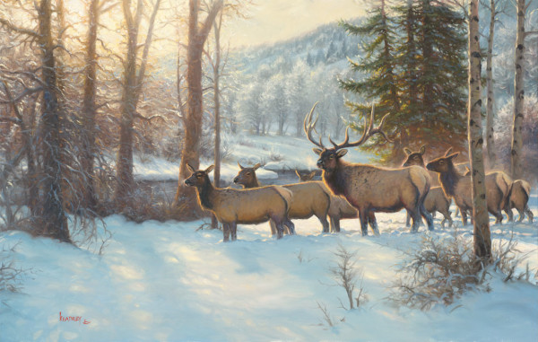 Morning Silence by Mark Keathley