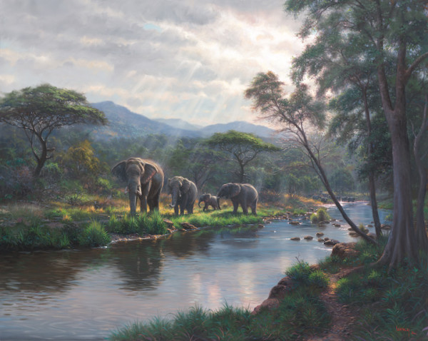 Safari Dreams by Mark Keathley