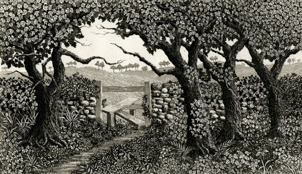The third stile by stephanie Jane Rampton