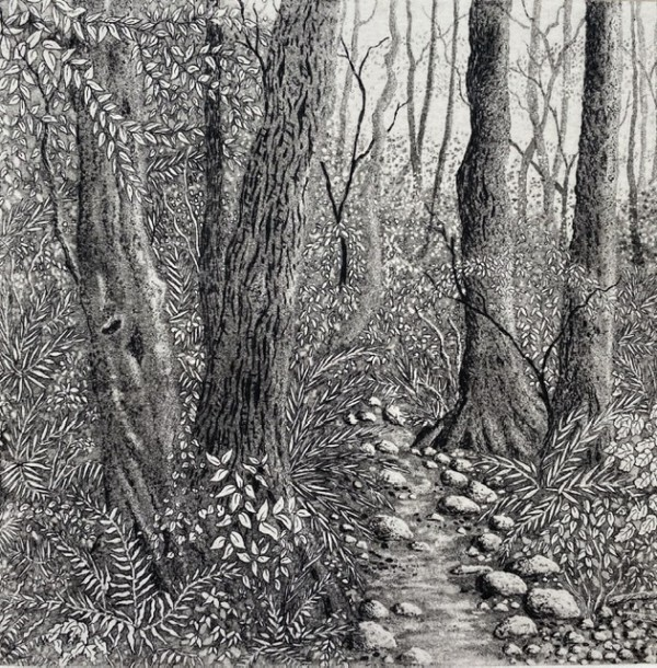 The path through the woods by stephanie Jane Rampton