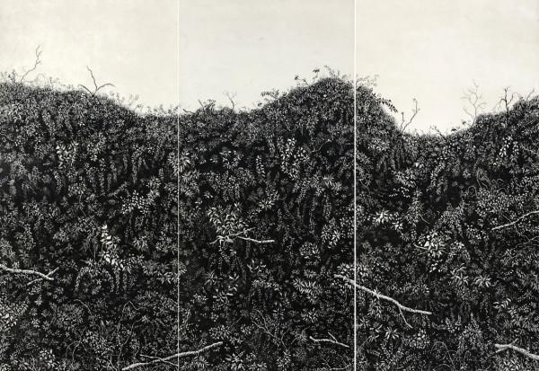 Lark rise hedgerow by stephanie Jane Rampton
