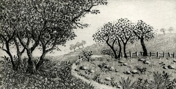Rural scene by stephanie Jane Rampton