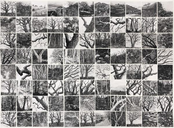 eighty eight memories II by stephanie Jane Rampton