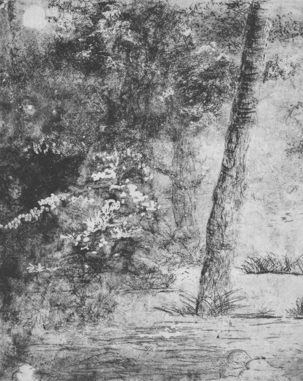 gloaming by stephanie Jane Rampton