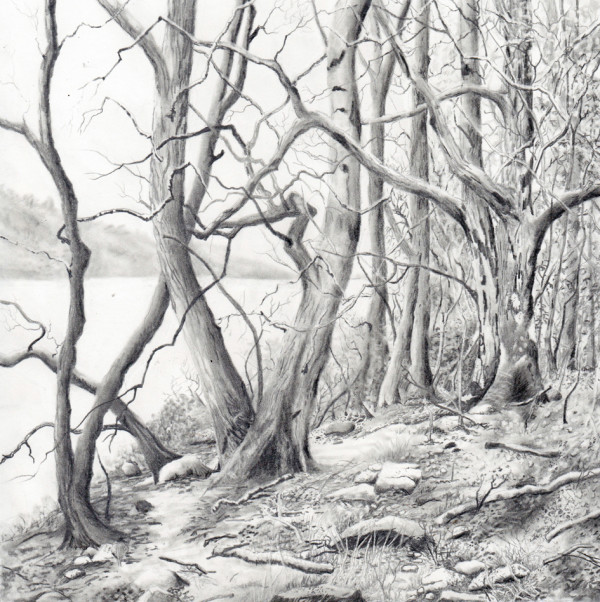 coniston water by stephanie Jane Rampton