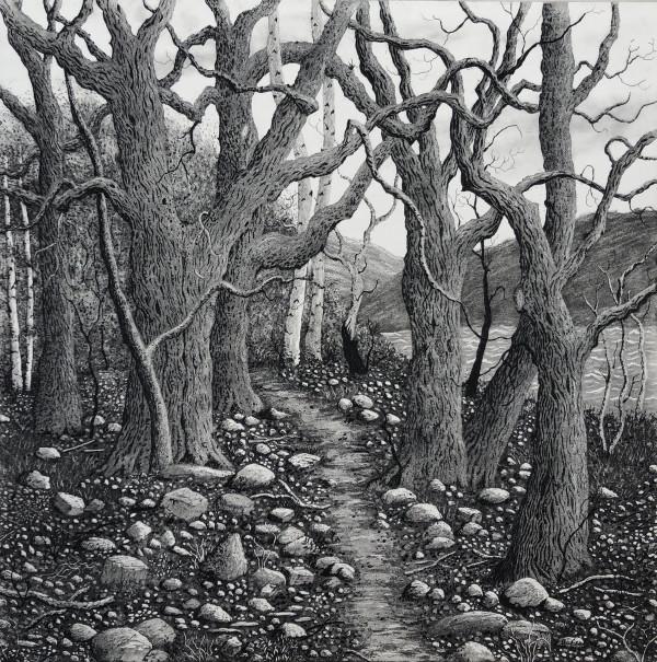 ode to the lake poets by stephanie Jane Rampton