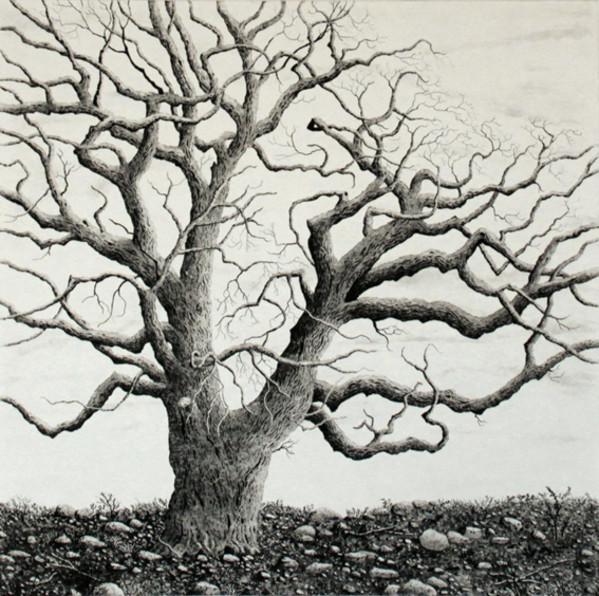 ode to winter by stephanie Jane Rampton