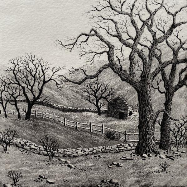 rural view with barn by stephanie Jane Rampton