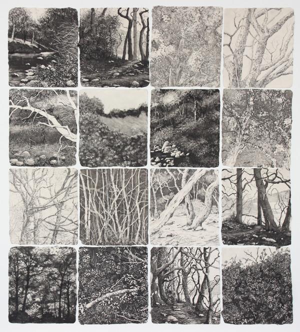 sanctuaries 1 by stephanie Jane Rampton