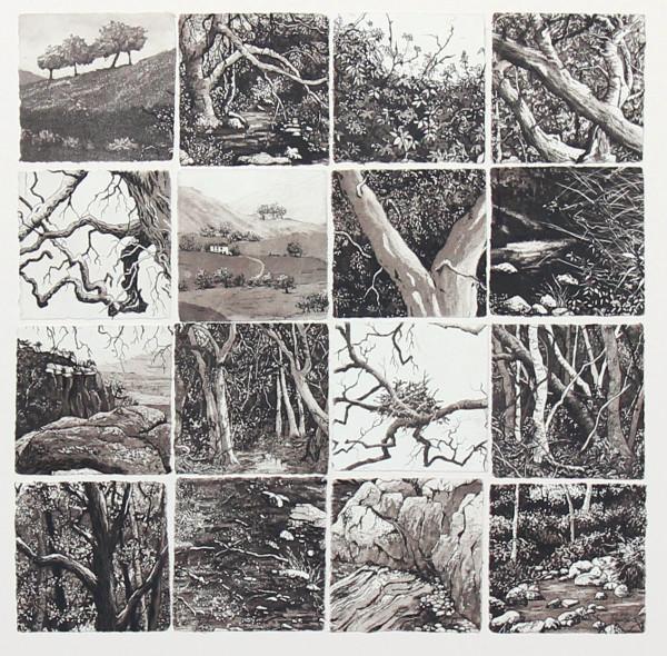 sixteen memories II by stephanie Jane Rampton