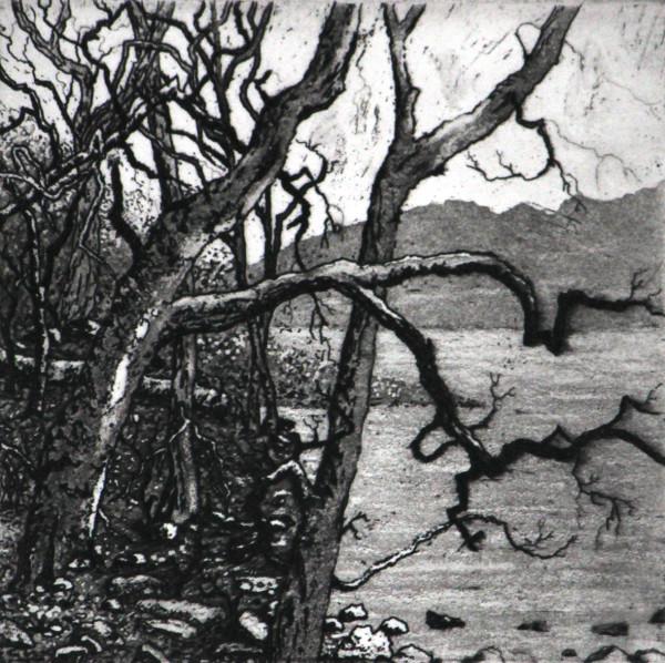 the mere by stephanie Jane Rampton