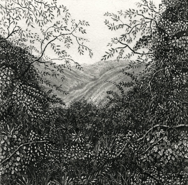 the view from Grandma's by stephanie Jane Rampton