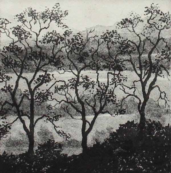 three trees and landscape by stephanie Jane Rampton