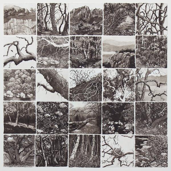 twenty five sanctuaries by stephanie Jane Rampton