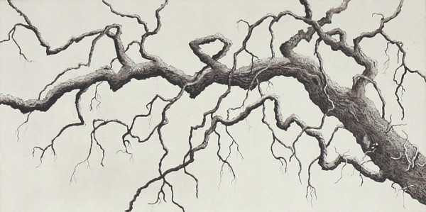 twisted branch by stephanie Jane Rampton