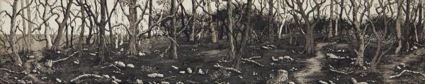 wooded shore by stephanie Jane Rampton