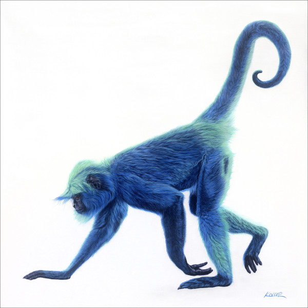 BLUE MONKEY ON WHITE, 2016 by HELMUT KOLLER