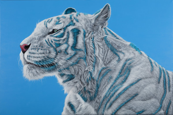 WHITE TIGER ON BLUE, 2016 by HELMUT KOLLER
