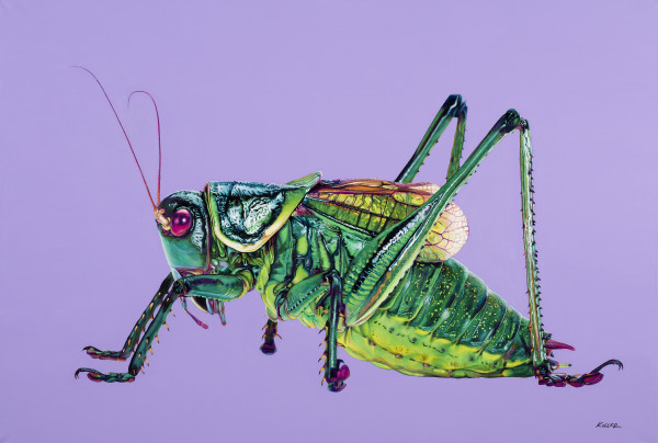 GRASSHOPPER ON PURPLE, 2016 by HELMUT KOLLER
