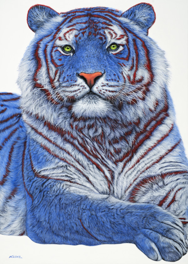 SIBERIAN TIGER IN BLUE, 2018 by HELMUT KOLLER