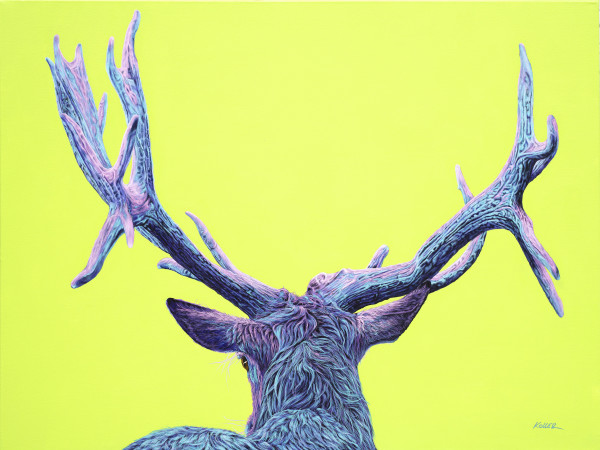 STAG ON YELLOW-GREEN, 2019 by HELMUT KOLLER
