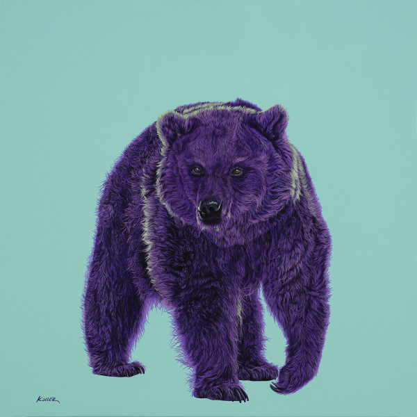 BEAR IN MAGENTA & GREEN, 2020 by HELMUT KOLLER