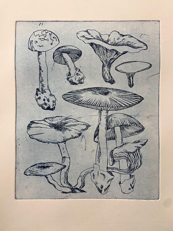 Mushroom Gathering