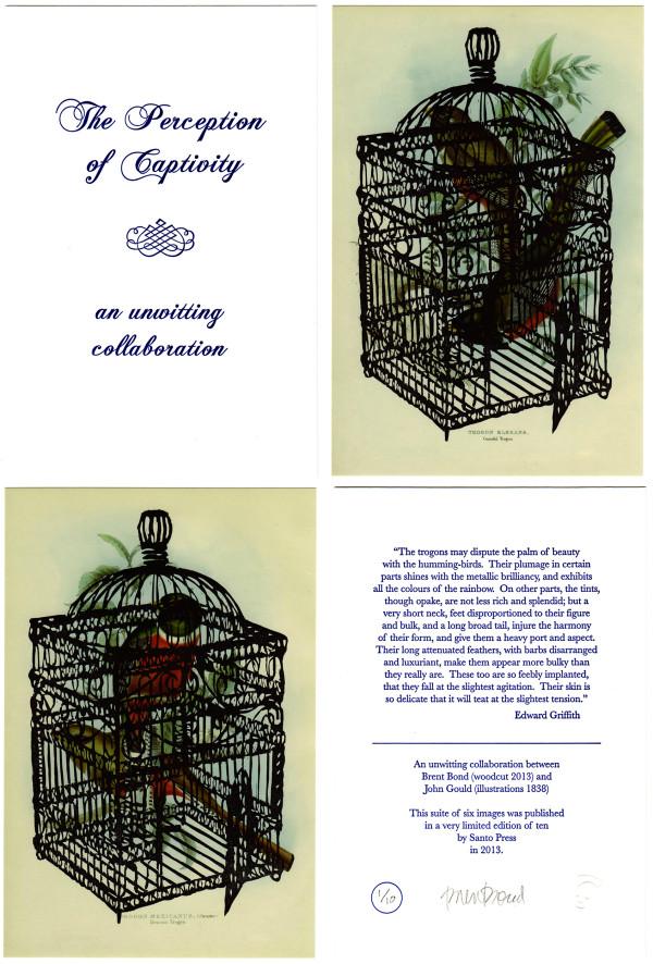 The Perception of Captivity