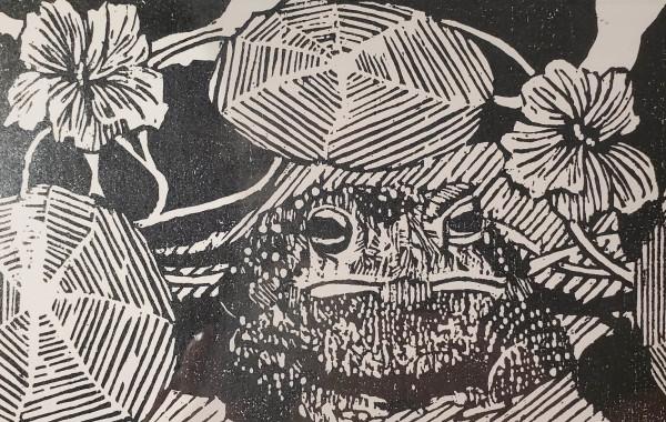 Toad and Nasturtium