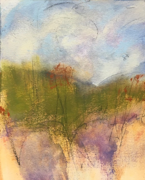 Arroyo I by Catherine Doocy