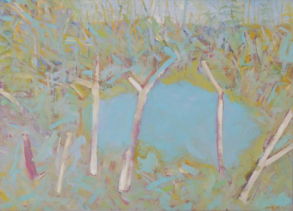"""""""Frog Pond"""" by Steven McHugh"""