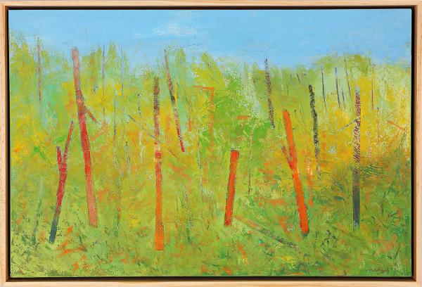 """Green Space"" by Steven McHugh"