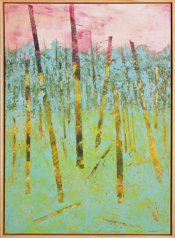 """Wonderment"" by Steven McHugh"