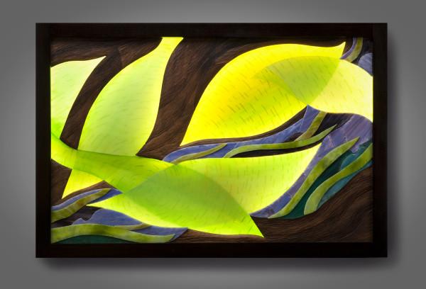 Luminous Leaf Patterns by aaron d laux