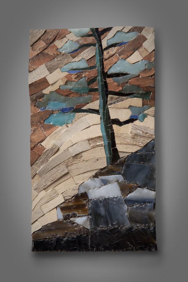 Mosaic Study 1 by aaron d laux