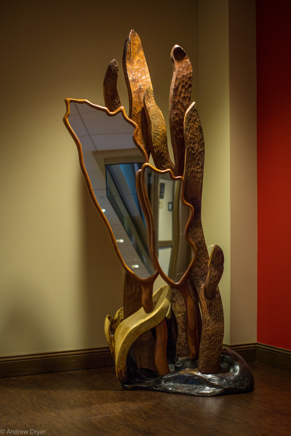 Squash Blossom Mirror by aaron d laux