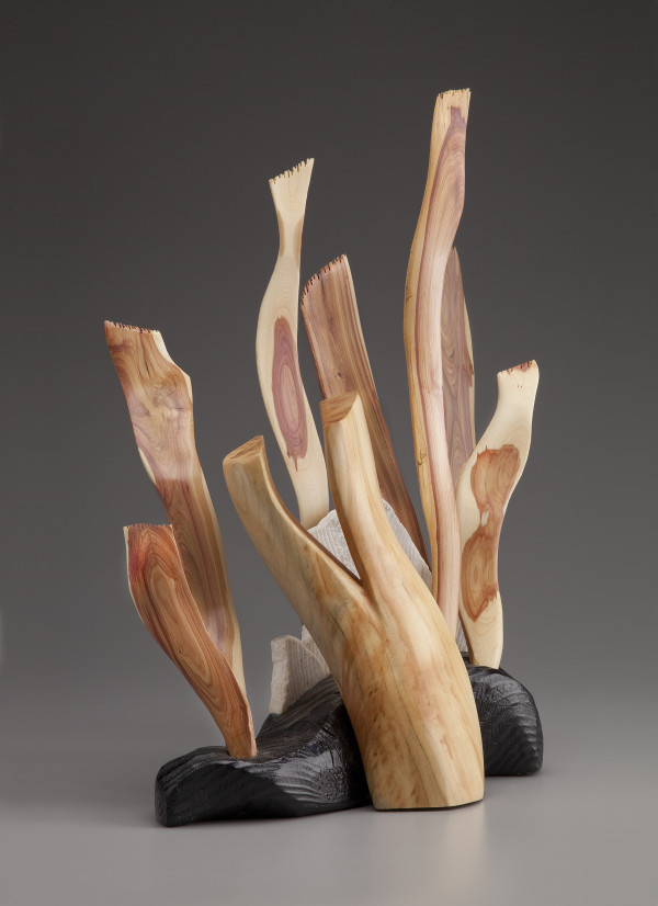Seaweed Sculpture by aaron d laux