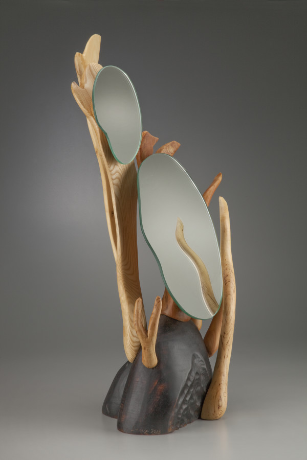 Vanity Mirror by aaron d laux