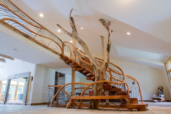 Tree House Stairway by aaron d laux