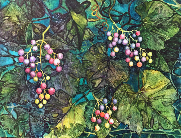 September Grapes an original watercolor by Helen R Klebesadel