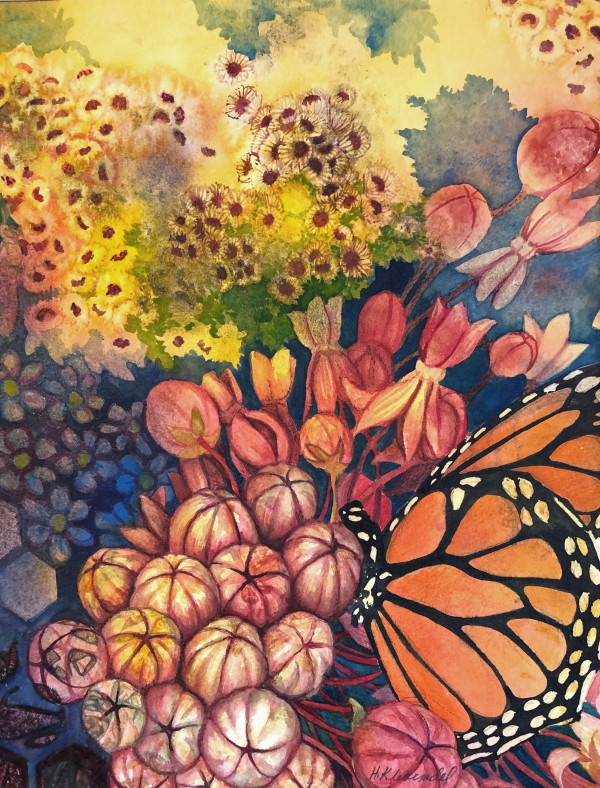 Monarch and Milkweed Blossom an original watercolor by Helen R Klebesadel