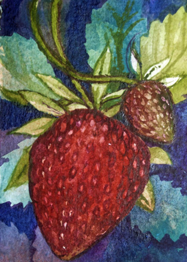 Strawberry Trading Card, 14 of 33 by Helen R Klebesadel