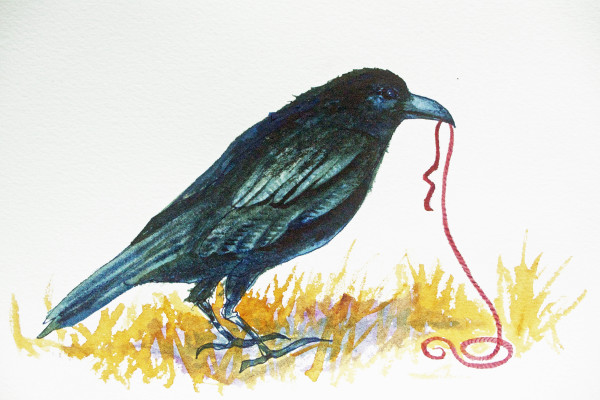 Crow and Red String Study,  19 of 33 by Helen R Klebesadel