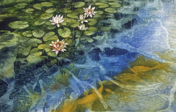 Koi and Water Lilies, 31 of 33 by Helen R Klebesadel