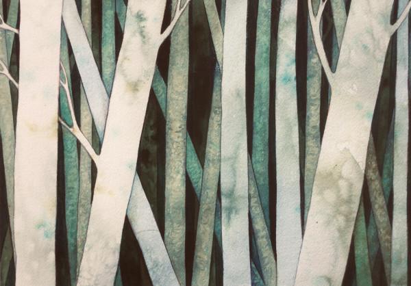 Birch Wood I by Helen R Klebesadel