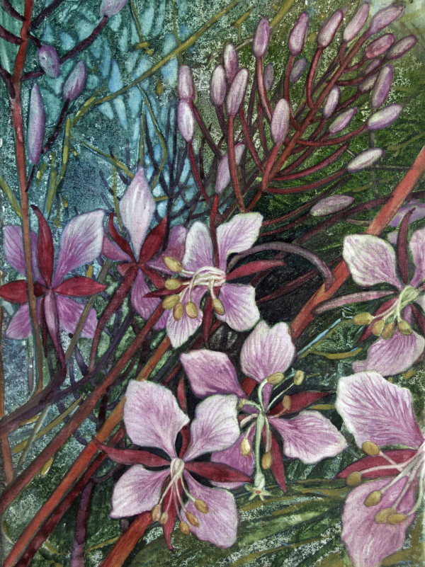 Fireweed I by Helen R Klebesadel