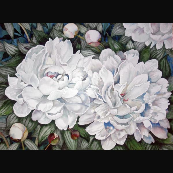 Peonies Love Ants by Helen R Klebesadel