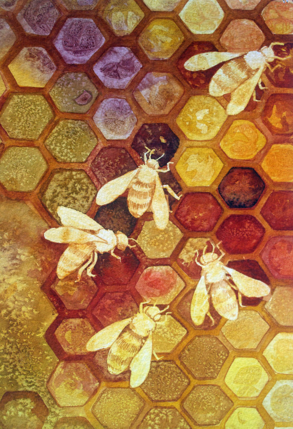 As Go The Bees Study by Helen R Klebesadel