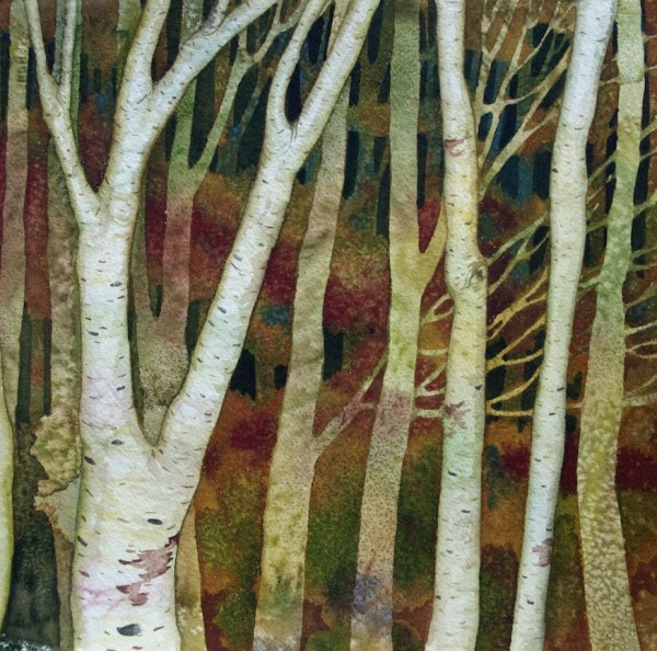 Birch Study by Helen R Klebesadel